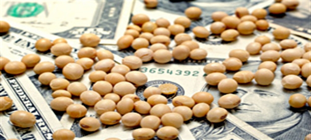 Soybeans-Money-Dollar-Bills