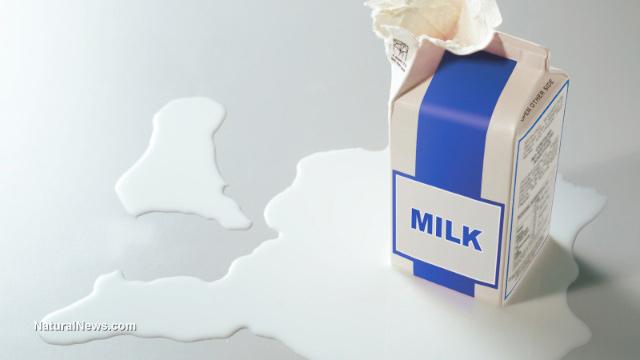 Spilt-Milk-Carton