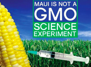 Maui Moratorium on GMO