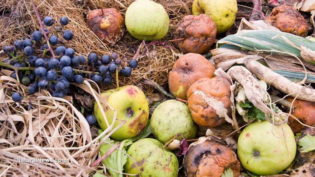 Rotting-Fruits-Produce-Farm-Waste