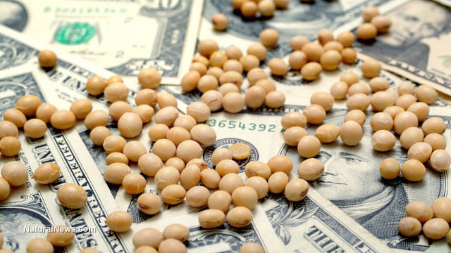 Soybeans-Money-Dollar-Bills