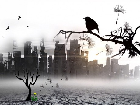 Desolation-Public-Domain-460x345