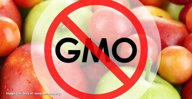 No-GMO-Apples