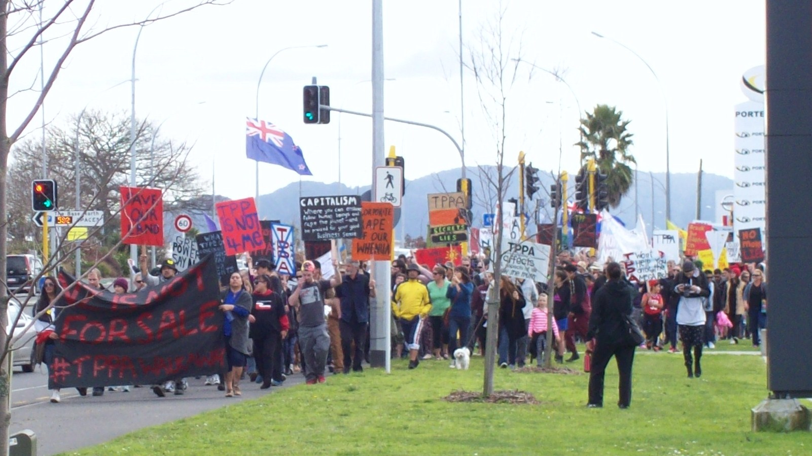 nz tppa protest