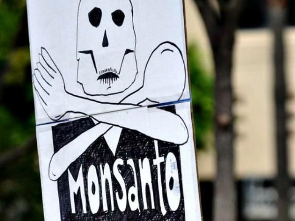 Monsanto-1-640x480-600x450