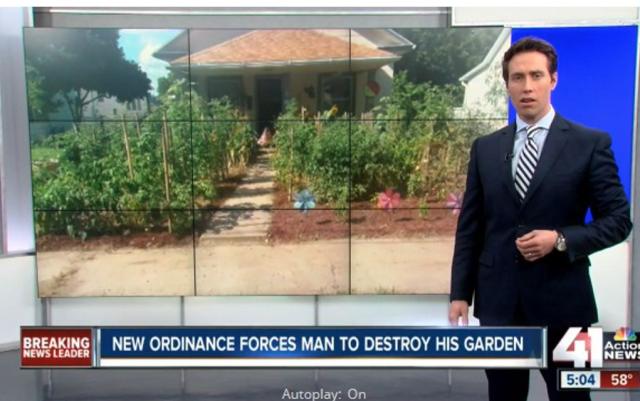 garden destroyed