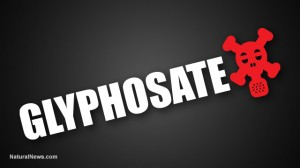 Glyphosate-Red-Mask-Herbicide
