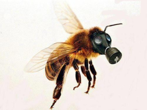bee in gas mask