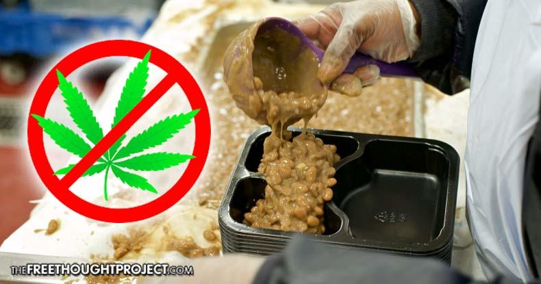 prison-food-marijuana
