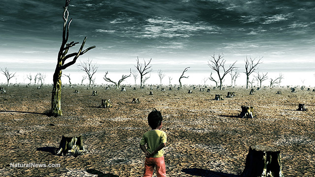 child-walking-apocalypse-war-torn-land