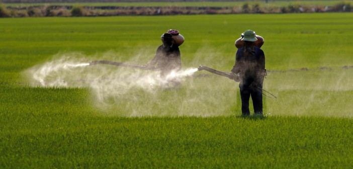 farmer-spraying-web-702x336