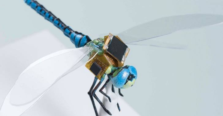 dragonfly-gm-1