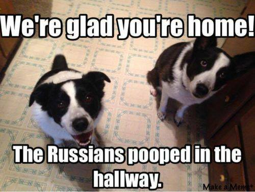 russians pooped