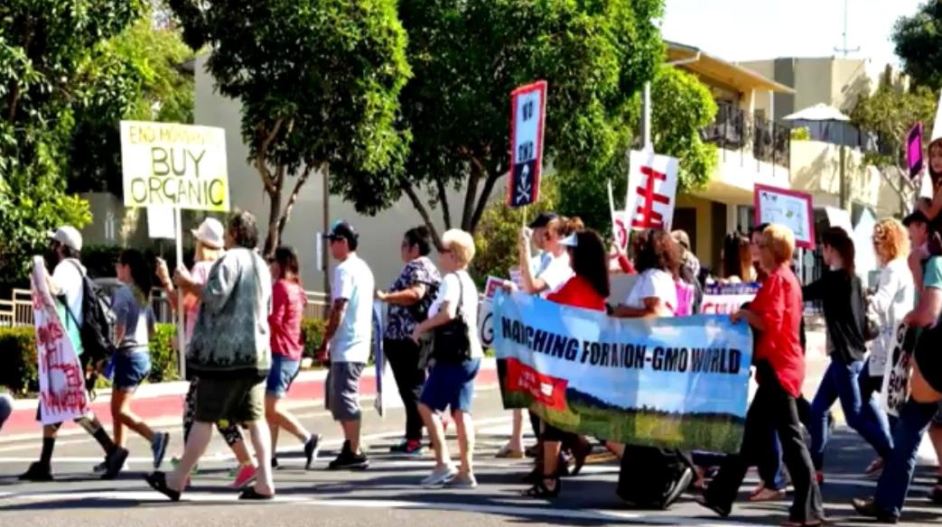 moms-across-america-march-against-monsanto
