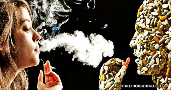 cannabis-pharma-700x368