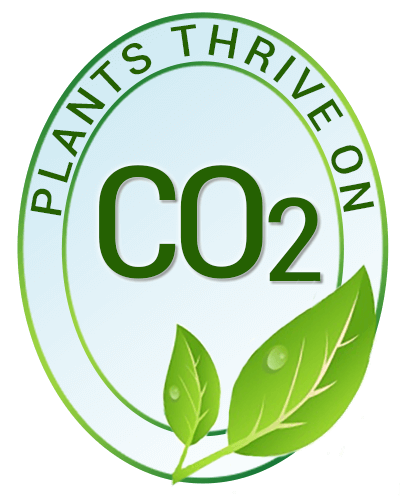 plants-thrive-on-co2