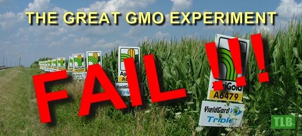 GMO-Experiment-1