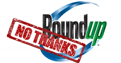 roundup_logo_no_thanks_stamp_1000x523