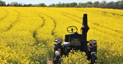 field_farm_rapeseed_canola_tractor_1000x523