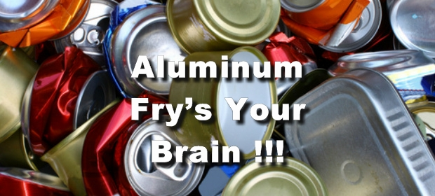 Aluminum-fries-your-brain